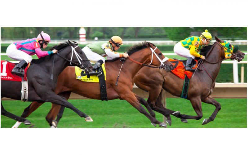 Corridas de cavalos throwback 29221